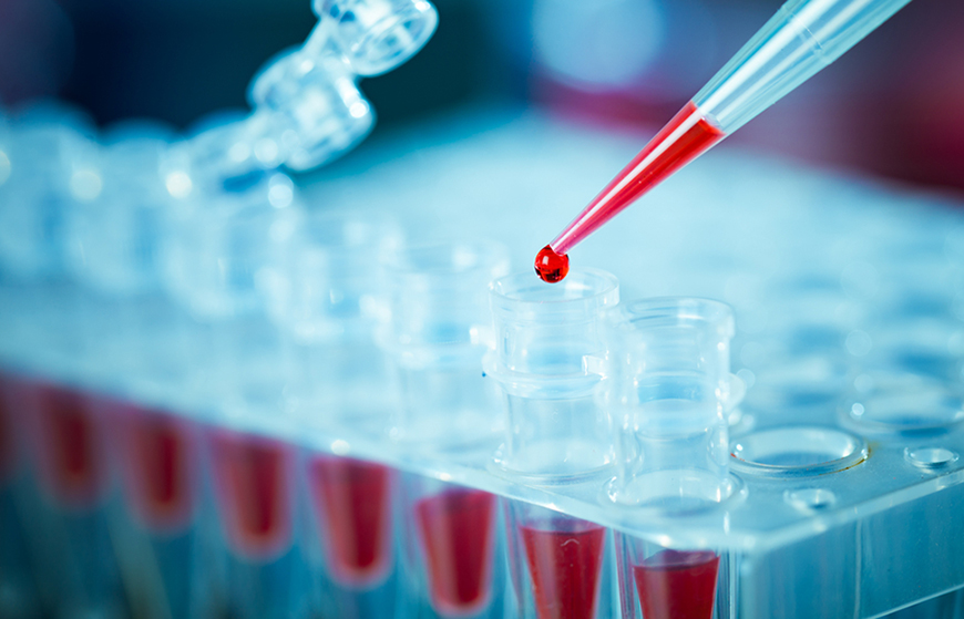 Molecular-PCR